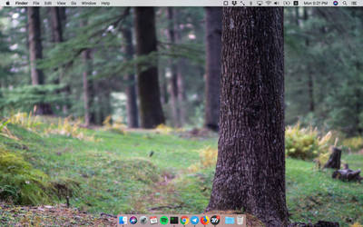 Desktop by fjorbit