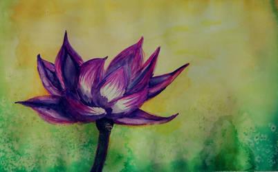 Lotus by sugardove123