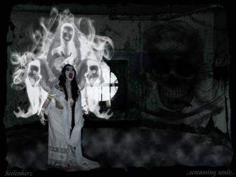 ..screaming souls.. by Seelenherz