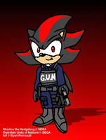 Agent Shadow the Hedgehog by RyanWolfSEAL