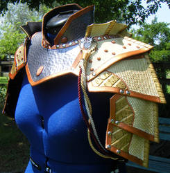 Paladin Cosplay Upper Body Leather Armor by Arexandria