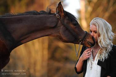 Affection by Hestefotograf