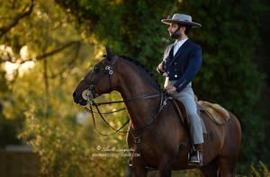 PSL Stallion Quente by Hestefotograf