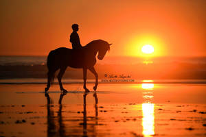 Eternal Sunset by Hestefotograf