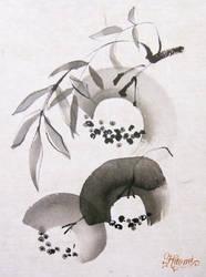 Nanakamado by HitomiOsanai