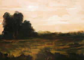 Southwest Fields by Natan-Estivallet