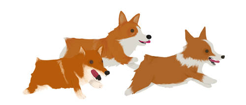 Running Corgis by whosname