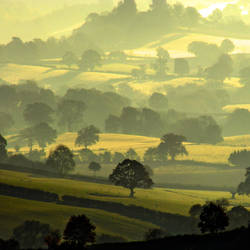 Misty Shires by Capturing-the-Light