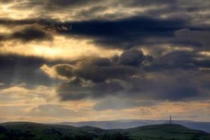 Dawn Chorus by Capturing-the-Light