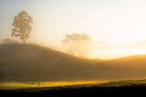 Serene Moment by Capturing-the-Light