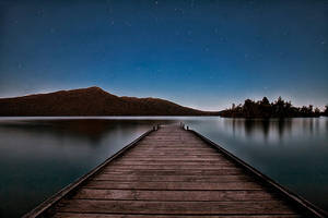 Night Vision by Capturing-the-Light