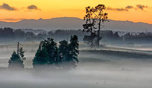 Shrouded Dawn by Capturing-the-Light