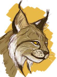 Beuzer0's Profile Picture
