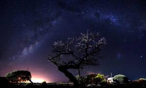Rangeland by Star Light by Trezizi