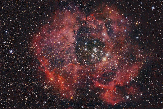 Rosette Nebula NGC 2237 by S-e-n-t-e-n-z-a