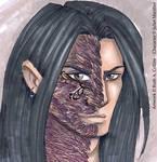 Raven by Lady-Silvercat by SevenWatersClub