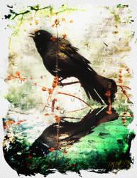 L oiseau by K-Roll-H