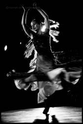 flamenco by kriklit