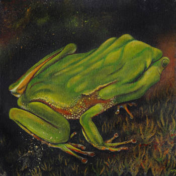 Handphibian by bedowynn