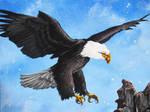 Eagle Point by bedowynn