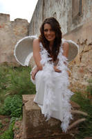 Posed Angel 19 by Storms-Stock