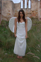 Posed Angel 37 by Storms-Stock