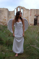 Posed Angel 39 by Storms-Stock