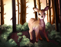 take a walk by foxpets