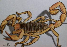 Scorpion on ATC by TinyAna