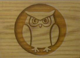 Owl by TinyAna