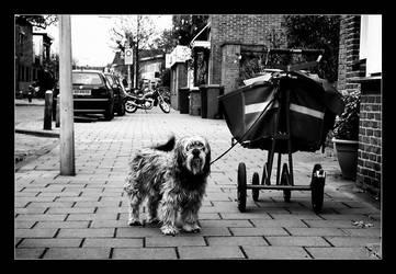 Postdog by Jaydehawk