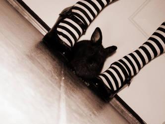 Oh Mr Rabbit by fatal-elegance