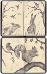 Moleskine Sketches by xhaimiddleton