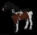 Pony 1 - Closed by xRavenwoodDesigns