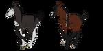 LilyDale Breeding by xRavenwoodDesigns