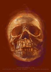 Human skull II by Whiteparasite