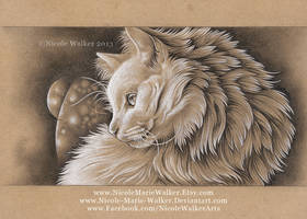 Fuzzy Feline by Nicole-Marie-Walker