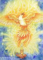Phoenix by Nicole-Marie-Walker
