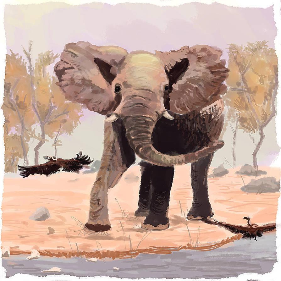 digital elephant study by Dauganor