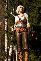 The Witcher 3, Ciri by AmazingRogue