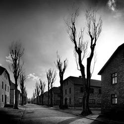 Auschwitz  ::1 by MisterKey