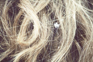 Snow Flake Hair by SarahMaeH