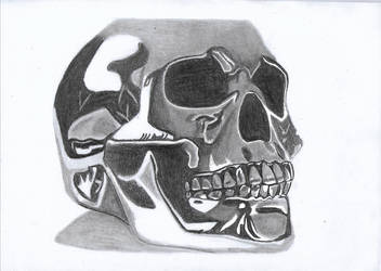 Chrome Skull Drawing by ayush627