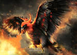 #663 Talonflame by Aurora-Silver
