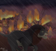 Tragic fire part 6 by M-WingedLioness