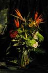 Elaine's bouquet by laurelrusswurm