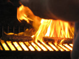 hot food by laurelrusswurm