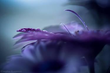 sweet dreams II by prismes