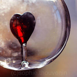 fragile heart in a bubble by prismes