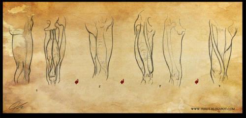 Study: The leg 1 by Shockowaffel